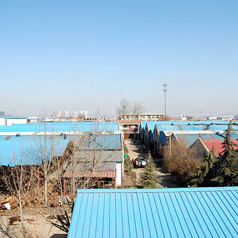 Jinan Chengdong Machinery Manufacture Co., Ltd.