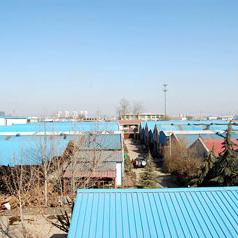 Jinan Dongcheng Paper Machinery Plant
