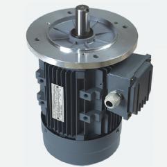 MS series aluminum housing three-phase electric motors