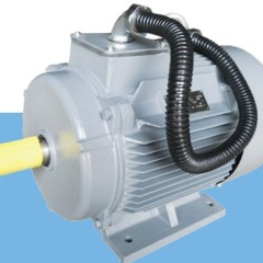 YX3 SERIES HIGH-EFFICIENCY INDUCTION MOTOR(H80-355)