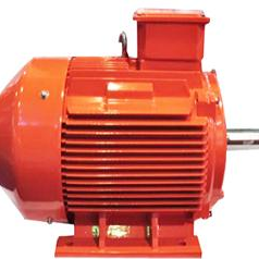 YE2 SERIES OF HIGH-EFFICIENCY ENERGY-SAVING 3-PHASE ASYNCHRONOUS MOTOR