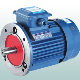MS Series aluminum three phase asynchronous motor