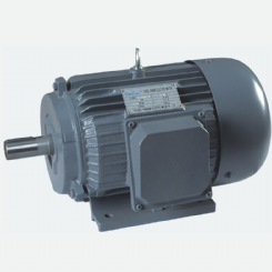 Y series three-phase electric motors