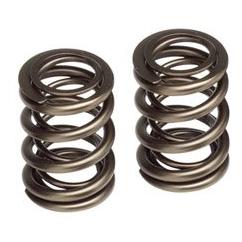 auto valve spring