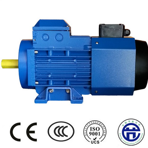 YVP Series Inverter-fed Motor
