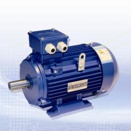 LE Серия Трехфазный асинхронный двигатель