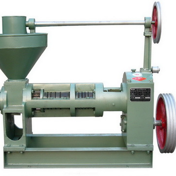 Amisy Screw Oil Press