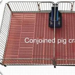 Piglet Nursery Crate