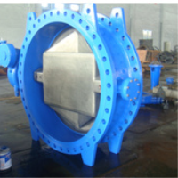 DN2500mm Butterfly Valve
