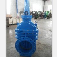 DN350mm Rising Gate Valve