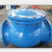 DN350mm Swing Check Valve