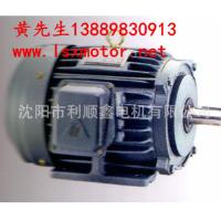 Taiwan East yuan motor TECO TECO horizontal brake motor