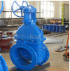 Hard seal cast iron gate valves