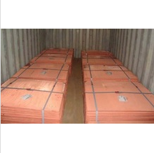 Copper cathode hot sale !
