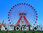 49m Ferris Wheel