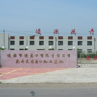 lingyuan municipal import & export co., ltd