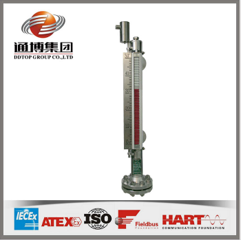 Magnetic float level transmitter