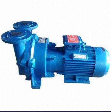 Water Ring Vacuum Pump with Uniform Corrosion Design