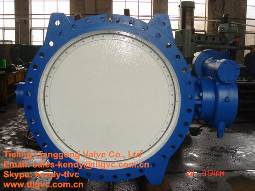 Bs Cast Iron Butterfly Valve