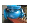 Grooved End Swing Check Valve