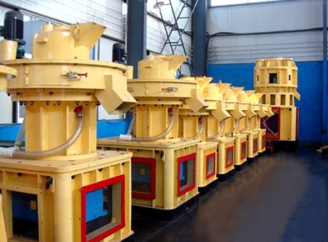 Sugar Cane Bagasse Pelletizing Machine for Sale