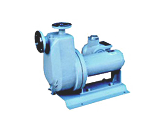 G-type Canned Motor Pump