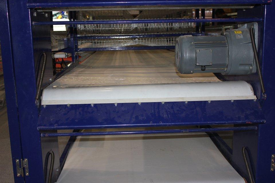 Belt Manure Removal System