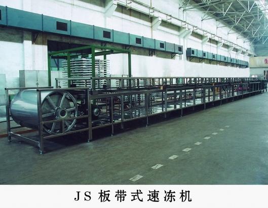 Ленточное устройство быстрого замораживания JS