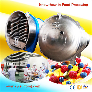 High quality food freeze dryer for sale