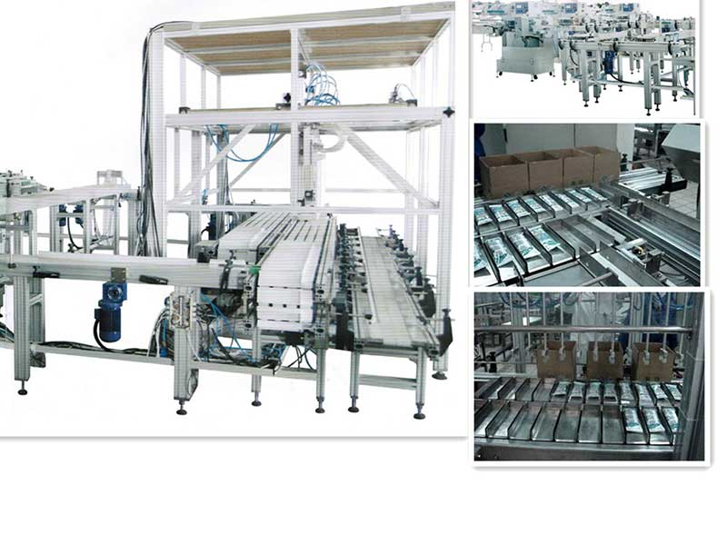 Full automatic ice cream cartoning machine, Secondary Packaging Equipment, Popsicle Cartoner