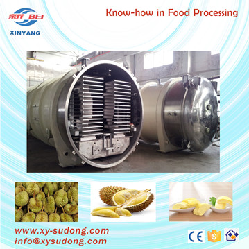 Pilot small freeze dryer for durian