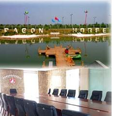 Luoyang Dragon-Horse Machinery Co., Ltd.