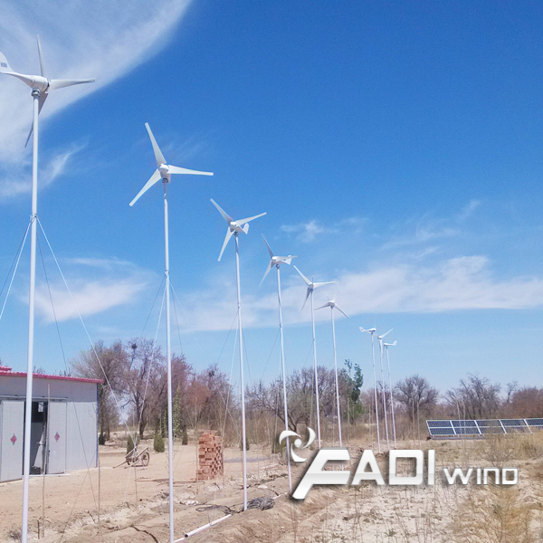 Horizontal 800W Wind Turbine (FD-WNS-800W)
