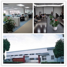 LEESUN POWER TECHNOLOGY CO., LTD