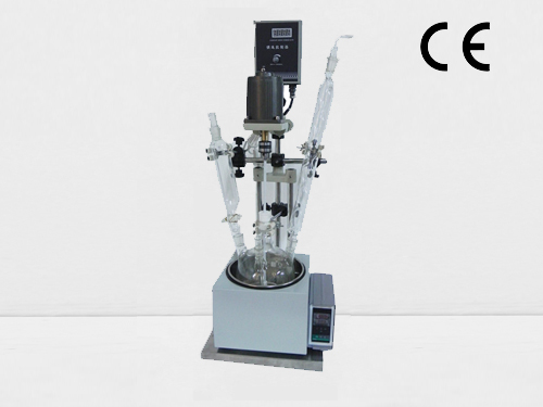 Single Chemical Process Batch Reactors 5Liters