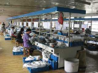 Yueqing Jingda Instrument Factory