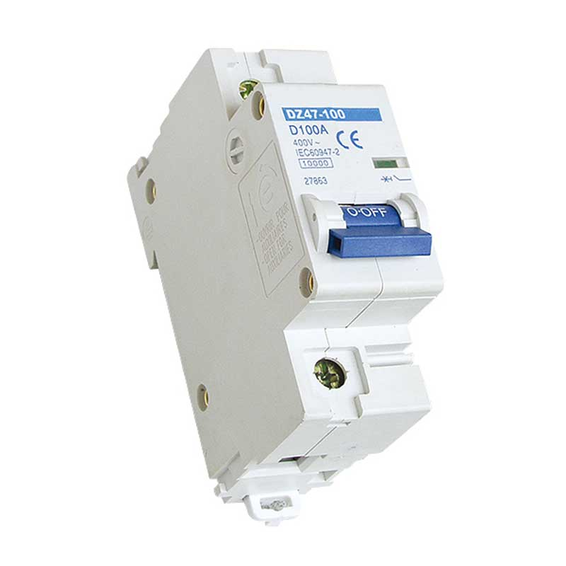 DZ47-100 Miniature Circuit Breaker