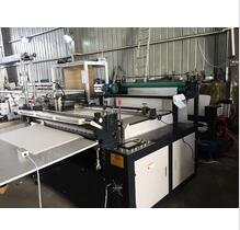 Plastic Film/Non Woven Fabric/Paper Roll to Sheet Cutting Machine