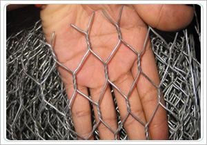 reverse twist hexagonal mesh machine