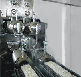Полноавтоматическая производственная линия крахмальной вермишели рисовой лапши NRS4
