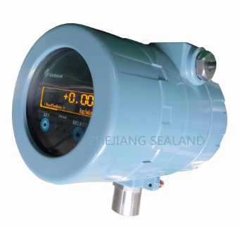 Natural gas Coriolis mass flow meter, mass flowmeter with flow rate 18kg/min