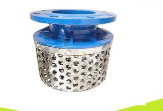 Ductile Iron Rose Strainer flange