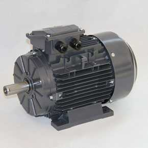 "IEC series   T series  ""ECOL"" Motors"
