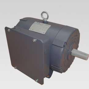 NEMA motors SLD series