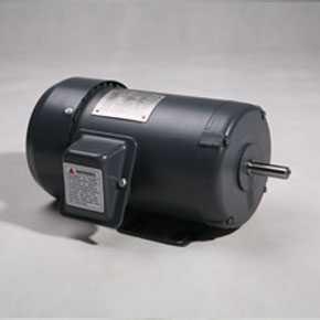 NEMA motors TF series