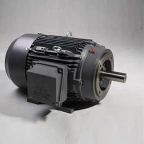 NEMA motors TFC/TXC series
