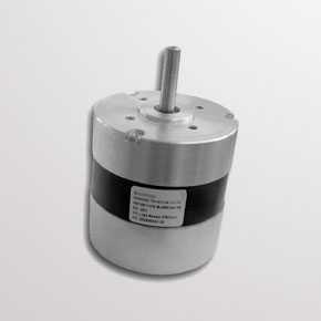 DC motors BL series