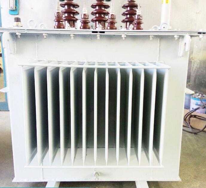 Three phase low loss good service various Oil immersed transformer