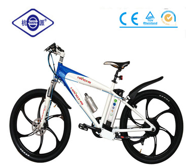 2016 two wheel stand up electric mountain bike/road ebike for hot sale(HP-E008 PLUS)