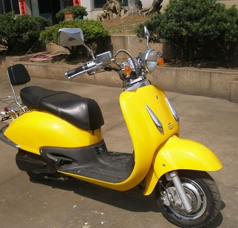 Electric Scooter TT- 1000DGW1